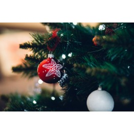 2018/12/22 - Весела Коледа и Щастлива Нова Година!